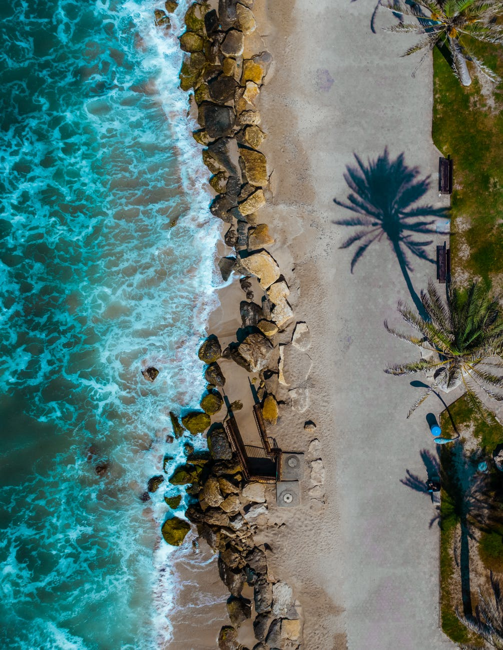 A wavy blue coast with palm trees. When comparing the beautiful beaches, there's no huge difference between living in LA and Miami.