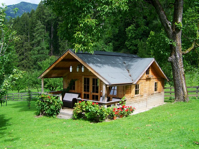 Downsizing tips - house in the woods