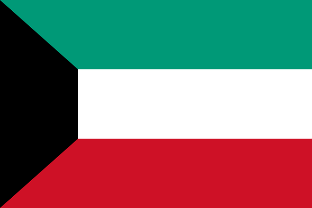 The flag of Kuwait.