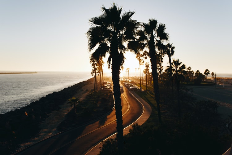 A road next to the ocean in beautiful San Diego.