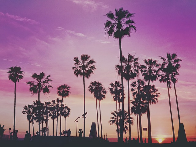 Palm trees and a sunset in one of the .peaceful cities of Los Angeles County.