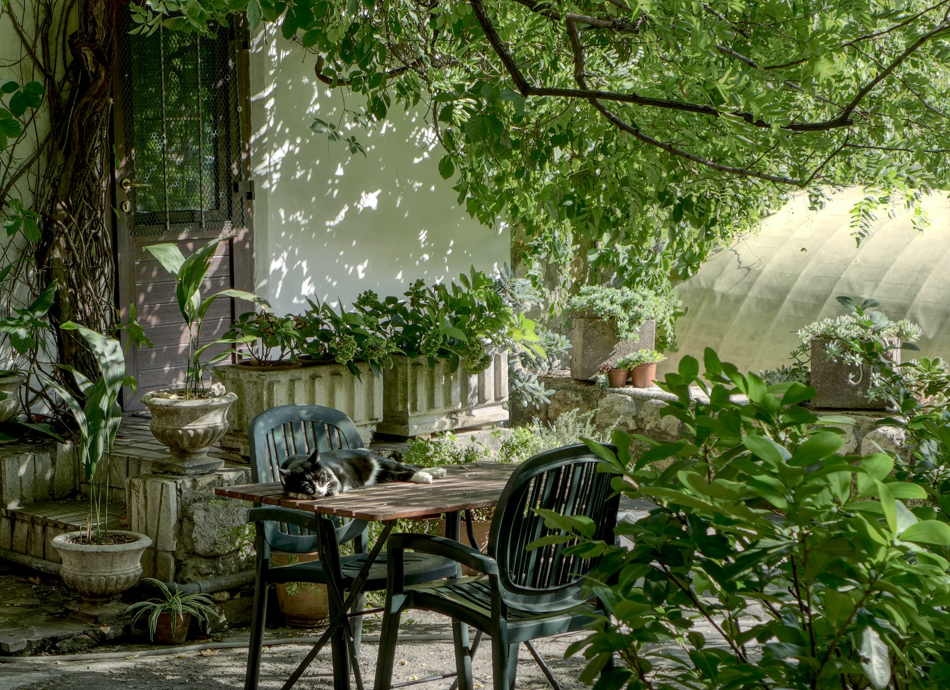 A brown wooden table and chairs inside a garden.